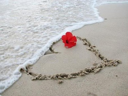 https://yemeniyyah.files.wordpress.com/2011/08/love-heart-love-love-hearts-animals-herzen-target_blank-romantic-sweet-pics-lettys-album-water-passion-album-n25c225b01-scenery-romance-sammy-wendys-mine-rain-beauties-sweet-ffs_large.jpg?w=300